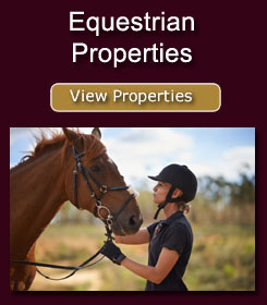 Click here to view our Equestrian properties